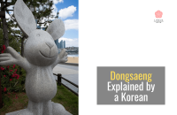 What Dongsaeng Really Means in Korean