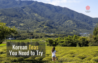 Korean Teas You Need to Try and How to Make them