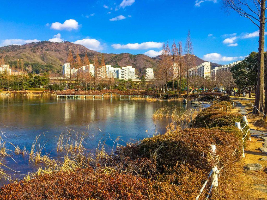 Lingua Asia_Korea_Autumn_Park_2021