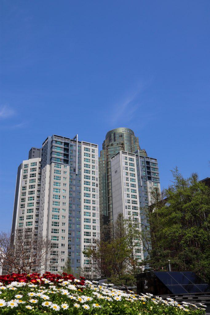 Lingua Asia_Living in South Korea_2021