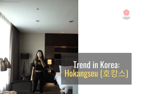 My Favorite Trend in Korea Hokangseu