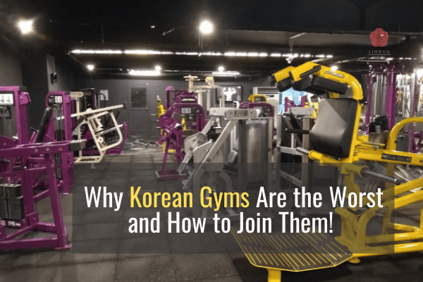 Why Korean Gyms are the Worst and How to Join them!